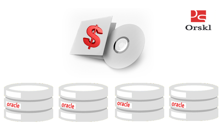 ORACLE DATABASE PROCESSOR BASED LICENSE COST